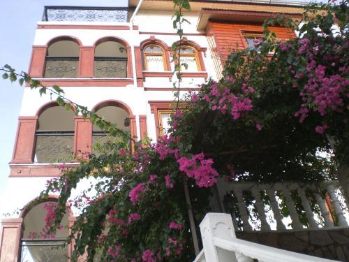 stylish apartments in alanya 2