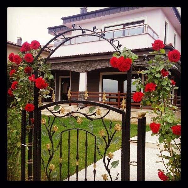 Property for Sale in Yalova Turkey 6